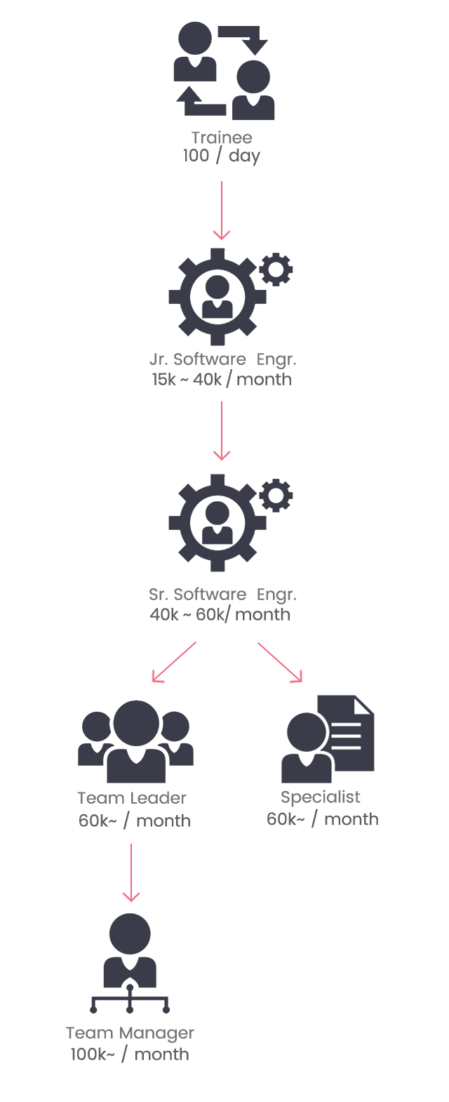 software engineer career model